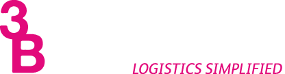 3B International Logo
